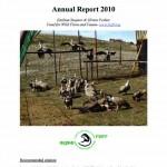 Kresna-Gorge-Griffon-Vulture-re-introduction-201001-150x150