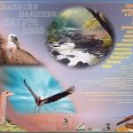 Poster Kotel in NATURA 2000