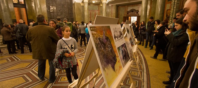 "First National Conference ""Reintroduction of Conservation- Reliant Species"" and ""Great Return"" exhibition"