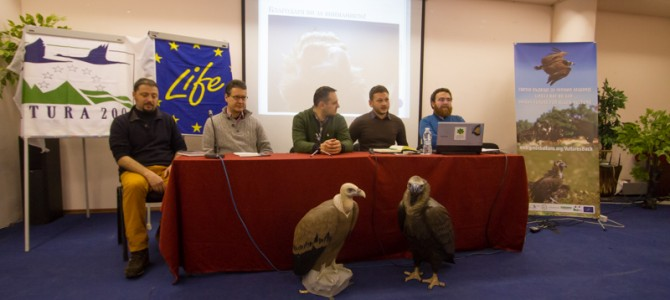 We have officially launched the Bright Future for Black Vulture Project LIFE14 NAT/BG/649