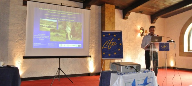 Three LIFE projects of FWFF and Green Balkans took part in a Platform Meeting on Wildlife Poisoning, which took place in Athens, Greece
