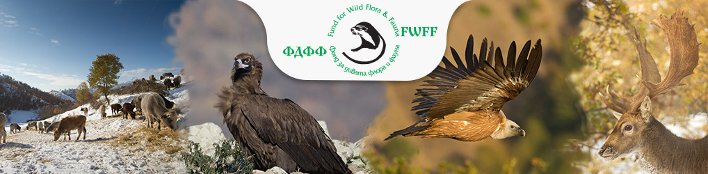 Fund for Wild Flora and Fauna