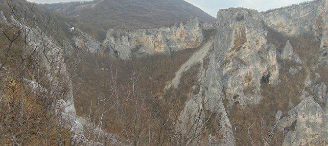 A new record – between 26 and 38 pairs of Griffon Vultures breed in Balkan Mountain. Vrachanski Balkan is best represented by the new places of the species.